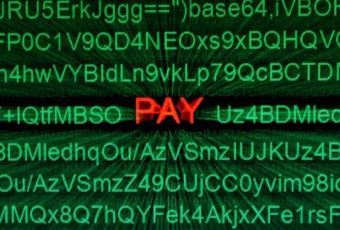 Pay Daze